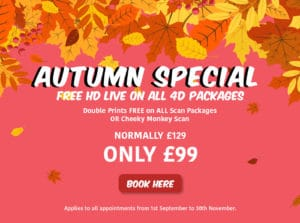 Peek-a-Baby Autumn Special flyer